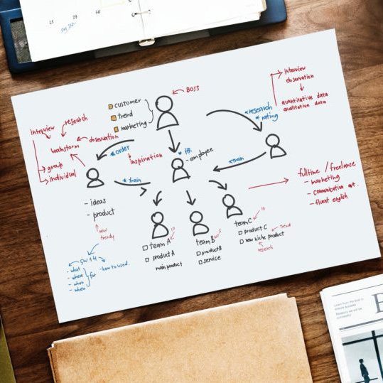 Organization Design: 5 Must-Read Articles to Transform your Business